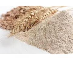 Cereales,avena,grano,cuido, alimentos