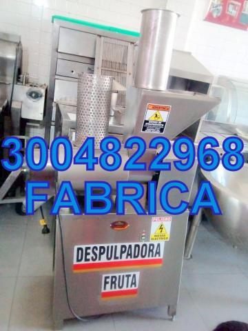 DESPULPADORA DE FRUTAS - 1/1