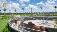 Caminador / andador para caballos Molenkoning - Fabricación en Países Bajos